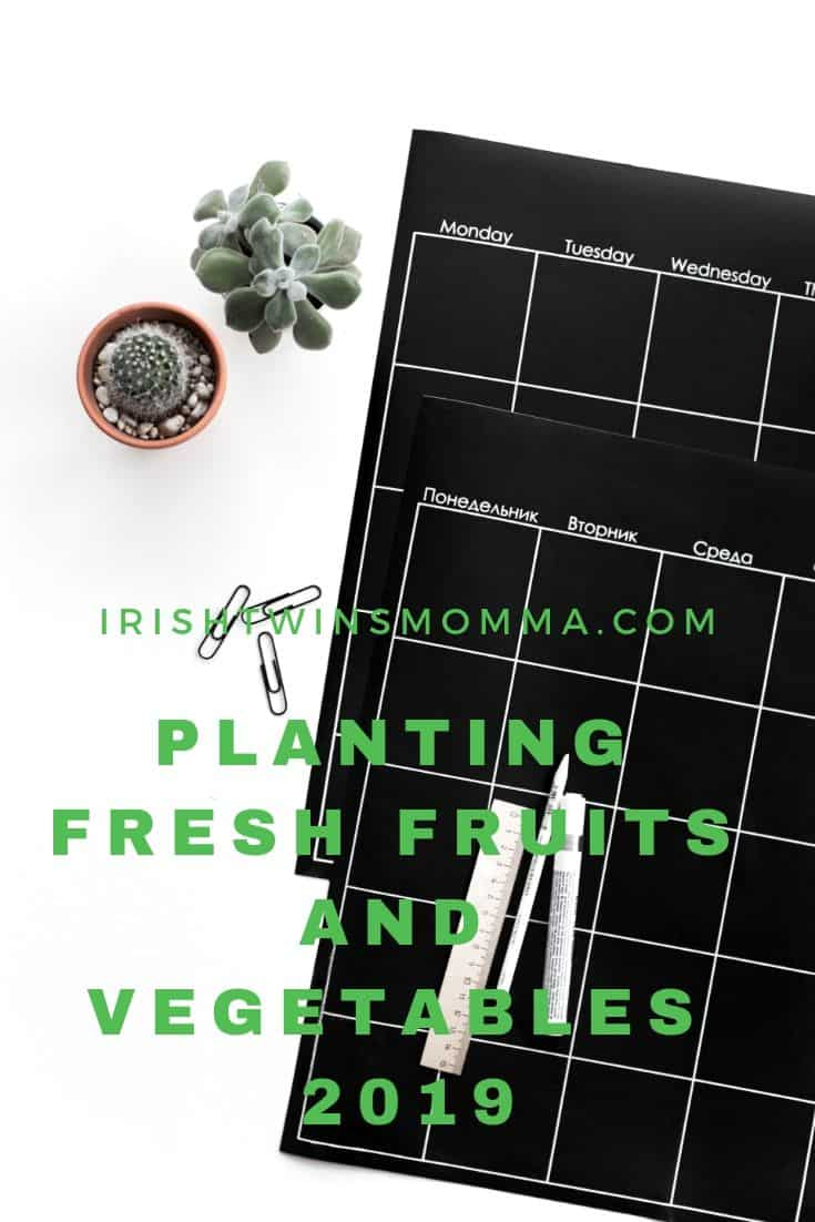 Planting and growing your own fruits and veggies with your kids via @irishtwinsmom11