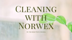 Norwex cleaning