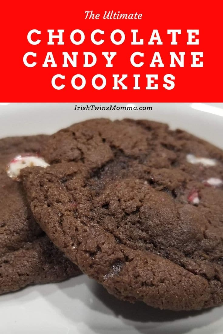 An amazing double chocolate cookie with cocoa, chocolate chips, and candy canes that is super satisfying with a cup of milk. via @irishtwinsmom11