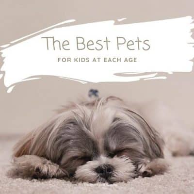 The Best Pets for Kids at Each Age